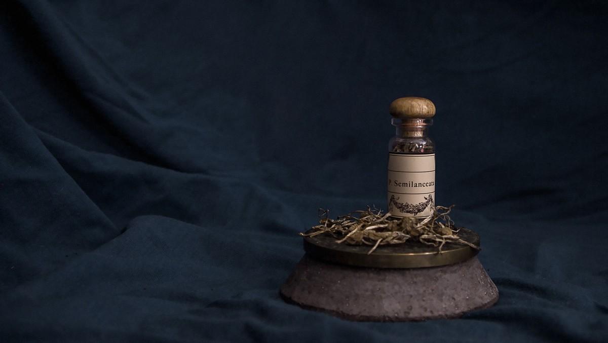 Speciální kapičky patří do oboru zvaného homeopatie.