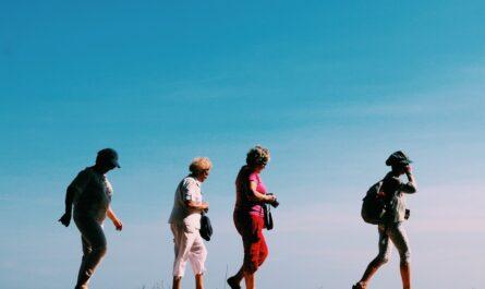 Pohybové aktivity, kterým se věnuje skupina důchodců.